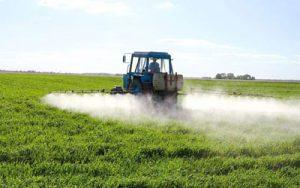 Clark Environmental Consulting - Providing Practical ...